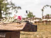 Destination Wedding in Croatia - Flammeum - Old Trails - Flower detail