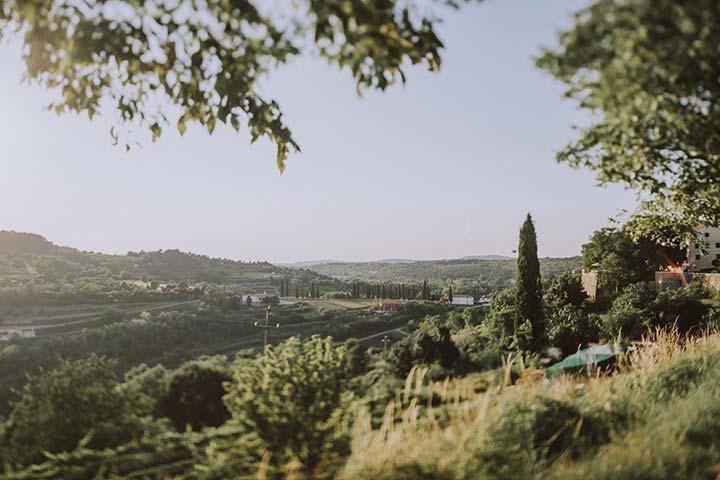 Predivna priroda u Istri - zelena polja.