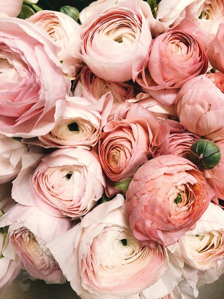 Završna cijena vjenčanja se može prilagoditi mijenjanjem izbora cvijeća i aranžmana.